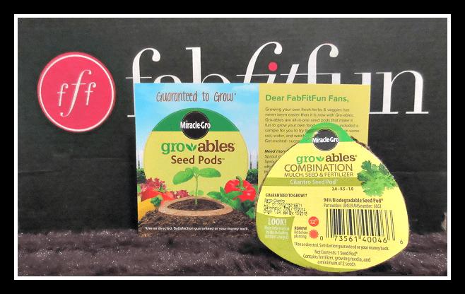 Growables Seed Pods - Coriander