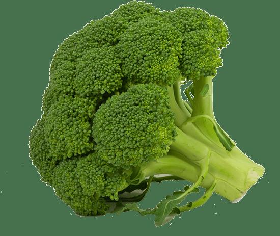 broccoli-med