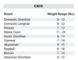 cat weight chart by breed