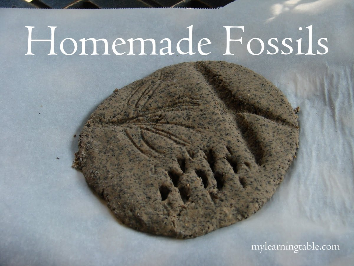 Craft: Homemade fossils