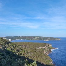 Manly Scenic Walk scenery