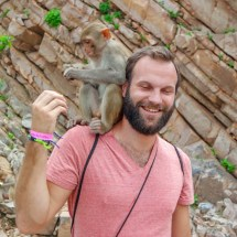 Jaipur-monkey on the shoulder