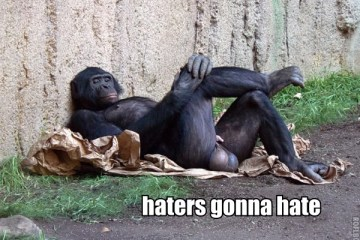 haters-gonna-hate-monkey-big-balls