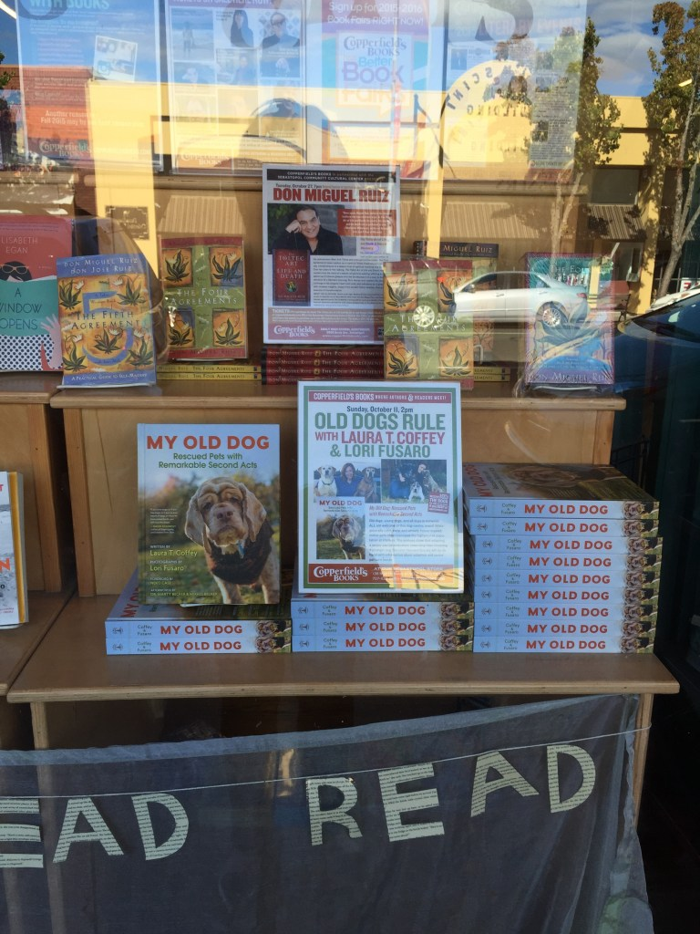 "Thank you, Copperfield's Books, for this amazing ""My Old Dog"" window display!"