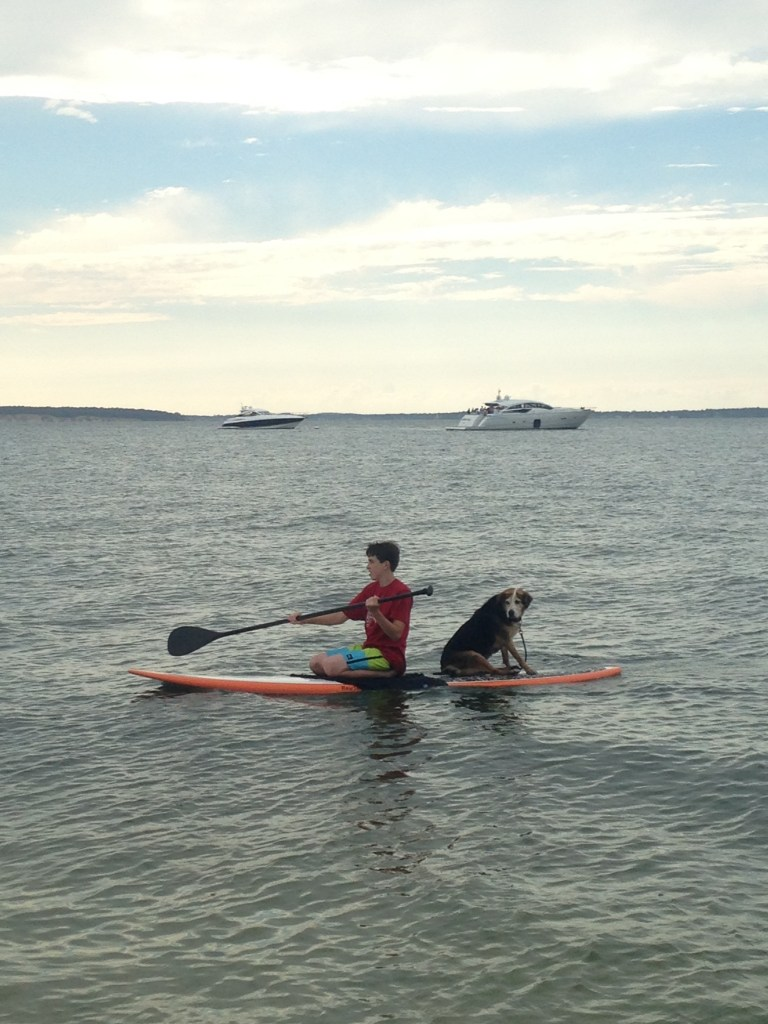 Fuji the dog loves to go paddleboarding with his favorite boy. (Photo courtesy of Lisa Daffy)