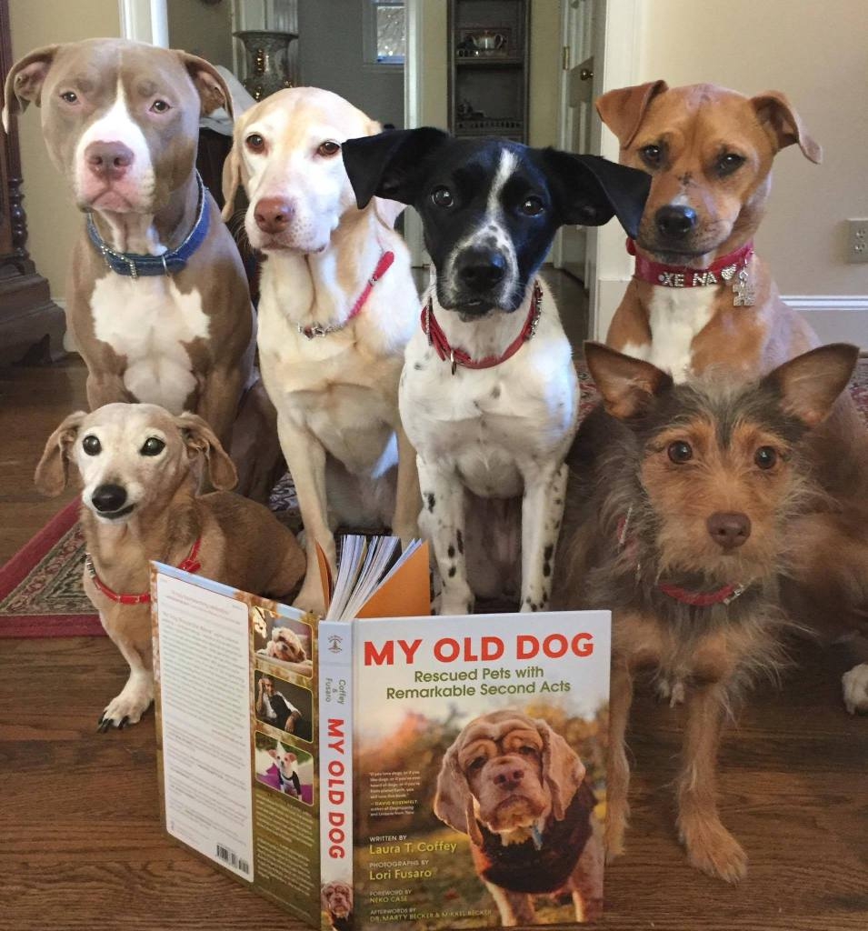 "Xena the Warrior Puppy and her dog pals with the ""My Old Dog"" book"