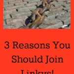 3 Reasons You Should Join Linkys!