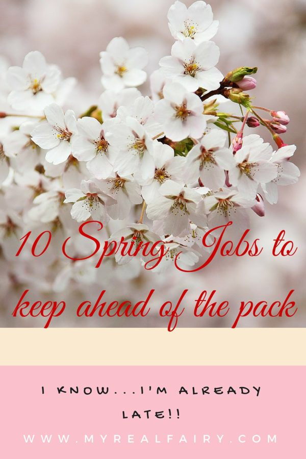 Top 10 Spring jobs….to keep ahead of the pack