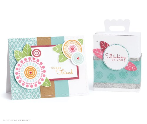 15-ai-sweet-friend-card-and-thinking-of-you-box