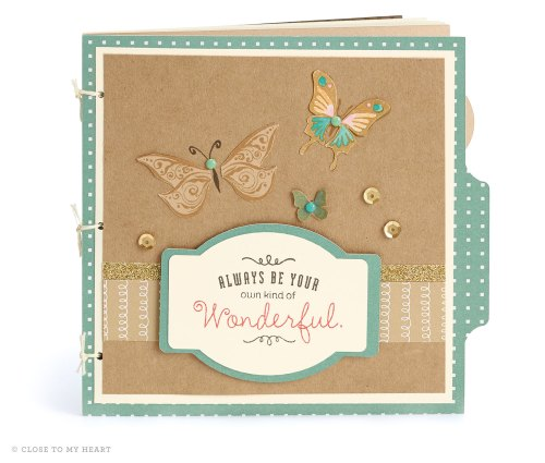 15-ai-wonderful-butterfly-book