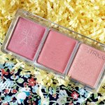 Oh Catrice Blush Artist Palette! I love my luxury products but for a blush, CorALL I Need!