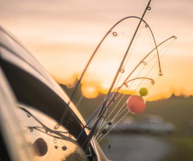 car-poles