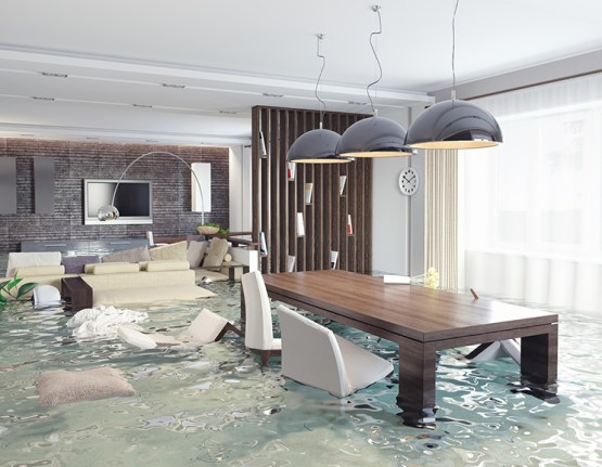 Watch Out! Your Homeowners Insurance Probably Doesn't Cover These Things