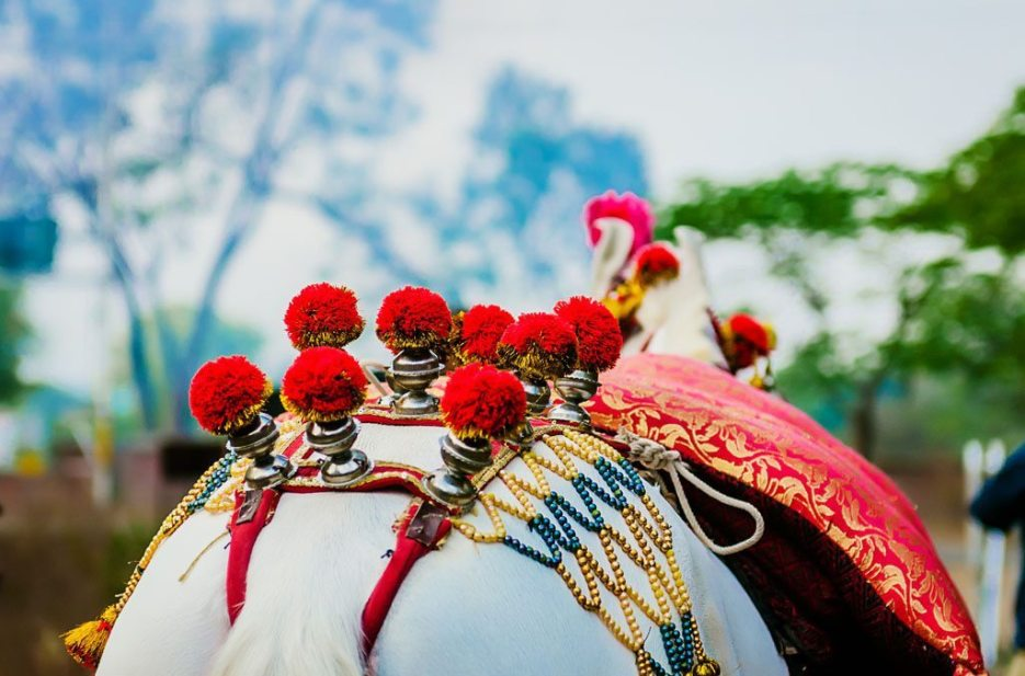 Anuradha-Vaibhav-Indian-Wedding-Photography-Knottytales-Naina-12.jpg