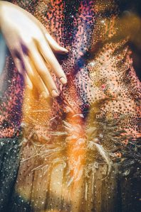 Tarun-Tahiliani-Bridal-Couture-Wedding-Wear-Fashion-Designer-Photographer-Naina-Knottytales-13.jpg