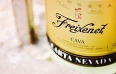 Freixenet-CAVA-Spanish-Sparkling-Wine-Naina-Photographer-thumb