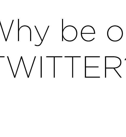 Why-Be-On-Twitter-NainaCo-Photographer-Storyteller-Raconteuse-Luxury-Lifestyle