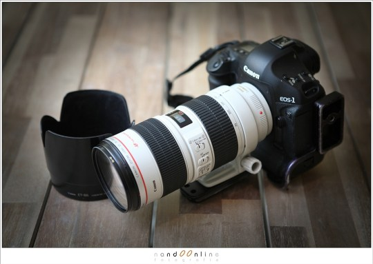 Canon EOS 1Dmk3 met EF70-200mm f/2,8L IS USM (5D041508)