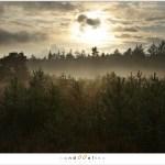 Sunset and upcomming fog (1D132304)