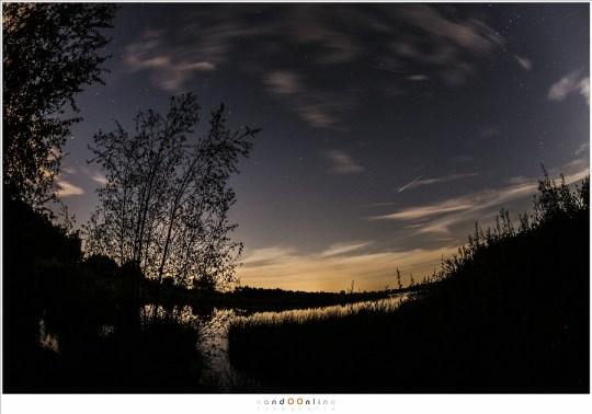 Collage van een aantal foto's met de Perseïden meteoren van 2014