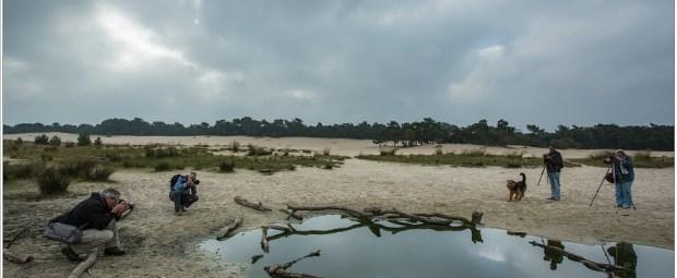 Gebruik maken van eenvoudige elementen in het landschap zoals een plas water
