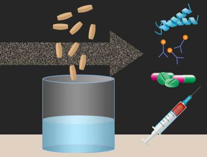 On-Demand Biomolecular Manufacturing