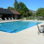 29 HOA community pool