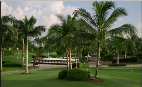 Lely Golf Club