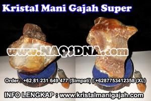 Mani Gajah Super
