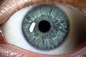 göz kuruluğu nasıl geçer