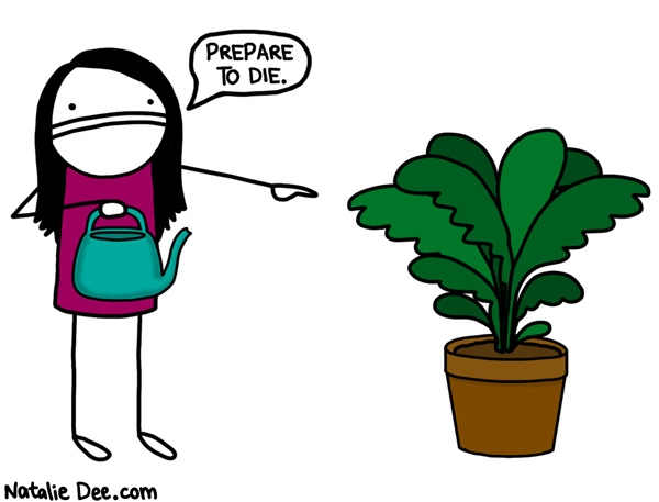 im the plantsecutioner Random Running Blog