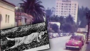 black dahlia murder solved killer