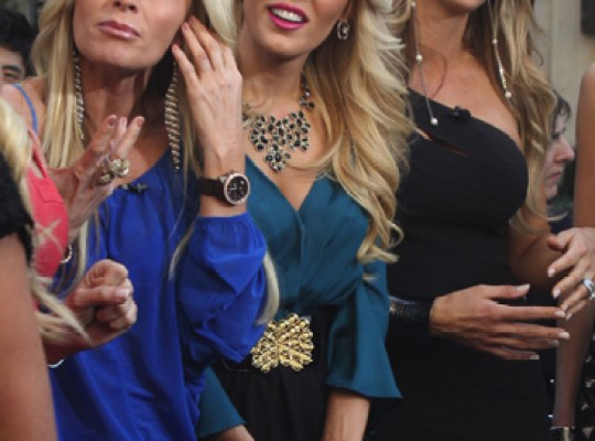 Tamra Barney, Gretchen Rossi and Alexis Bellino