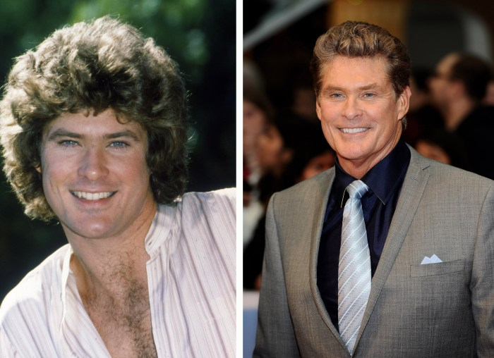 David Hasselhoff, <i>The Young And The Restless</i>