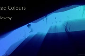 Header-Mellowtoy-ScreenColors-VideoScreenGrab