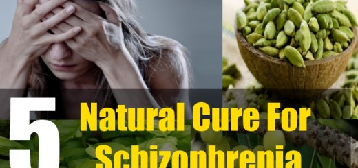 5 Natural Cure For Schizophrenia