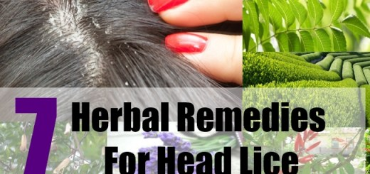 7 Herbal Remedies For Head Lice