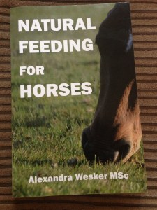 natural horsemanship ireland feeding