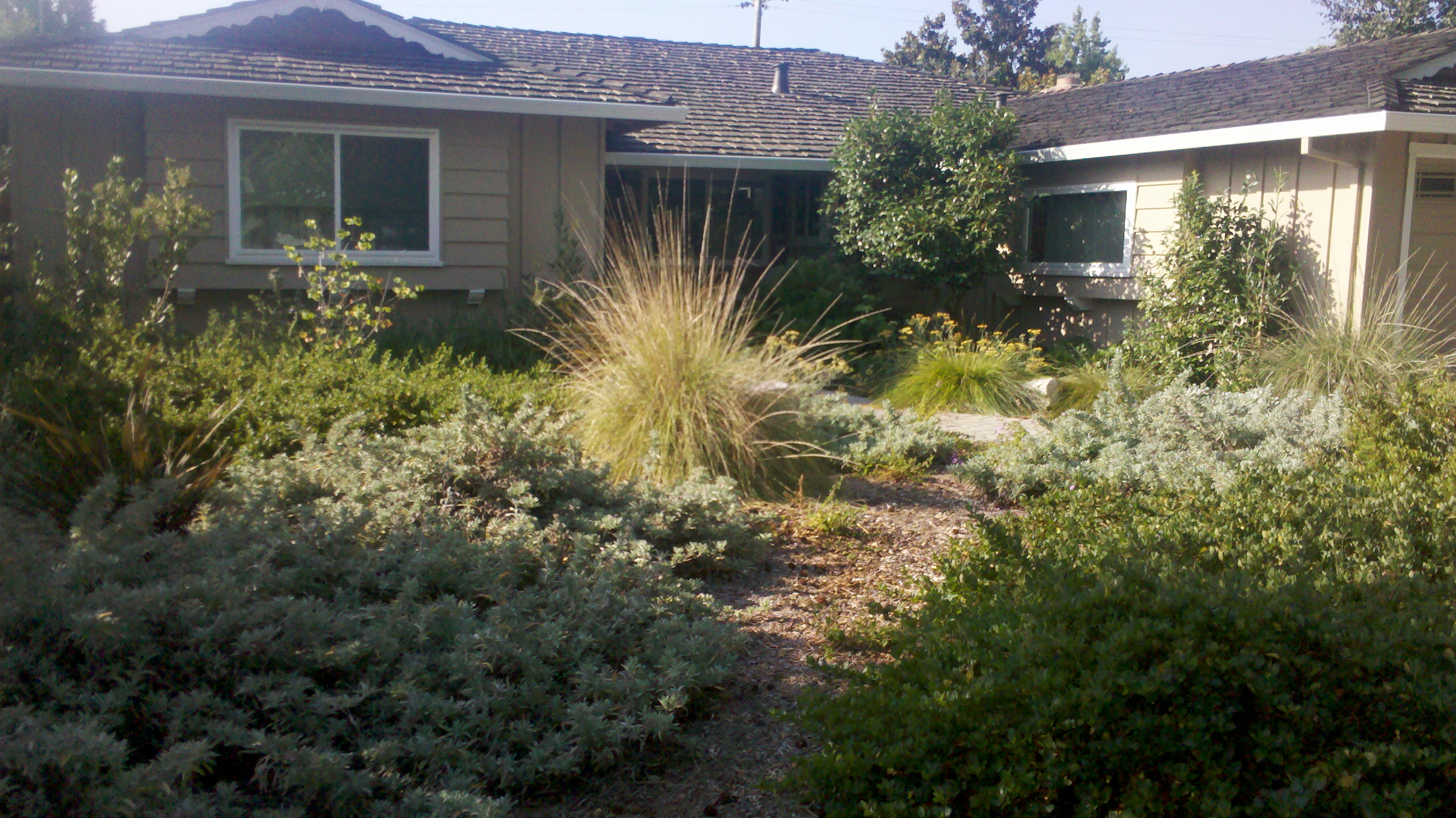 natural front yards sustainable