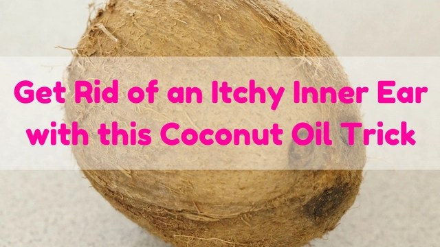 get-rid-of-itchy-inner-ear-with-this-coconut-oil-trick