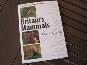 Britain's Mammals - a concise guide