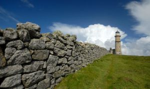 'Lundy Wall'. Pic Devon Hedge Group / Graham Woollven