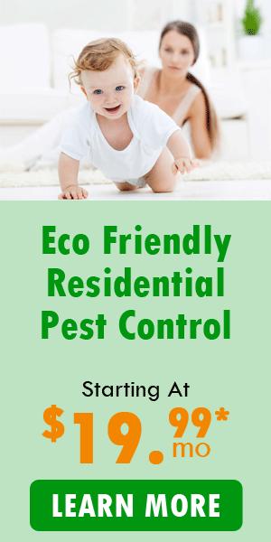eco friendly pest control