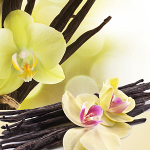 vanilla extract fragrance oil