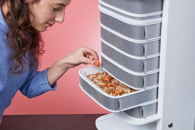hive-feeding-carrots_1460132871