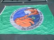 Bandeira_Faina_NaPaOc_Amazonas