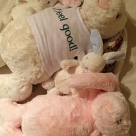イギリスで買う子供へのお土産、出産祝いジェリーキャットJelly Cat