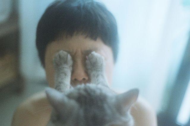 【猫画像】見たらあかん