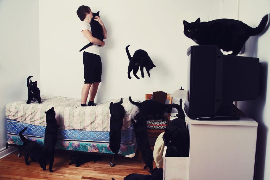 【猫アート】猫飼いの夢!?たくさんの愛猫に囲まれた写真 10選 -CRAZY CAT LOVERS / ANDRÉANNE LUPIEN-