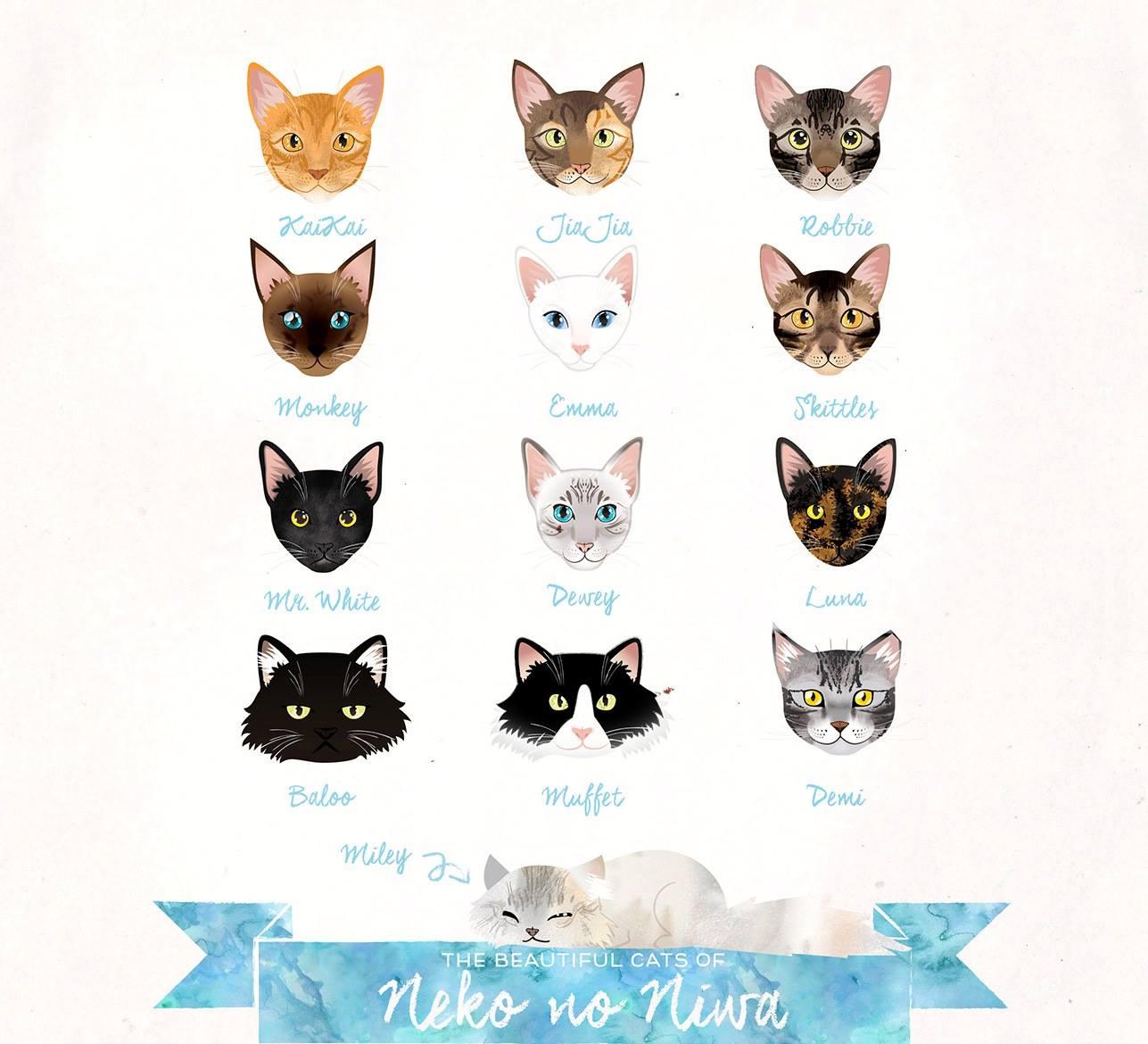 【猫ネタ】猫目的の観光もアリかも!?シンガポールでは猫ブームが!?